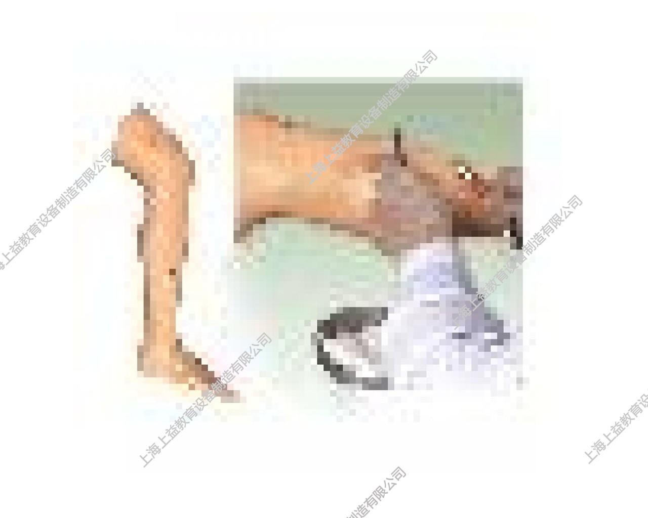 SG7250高级外科缝合腿肢模型