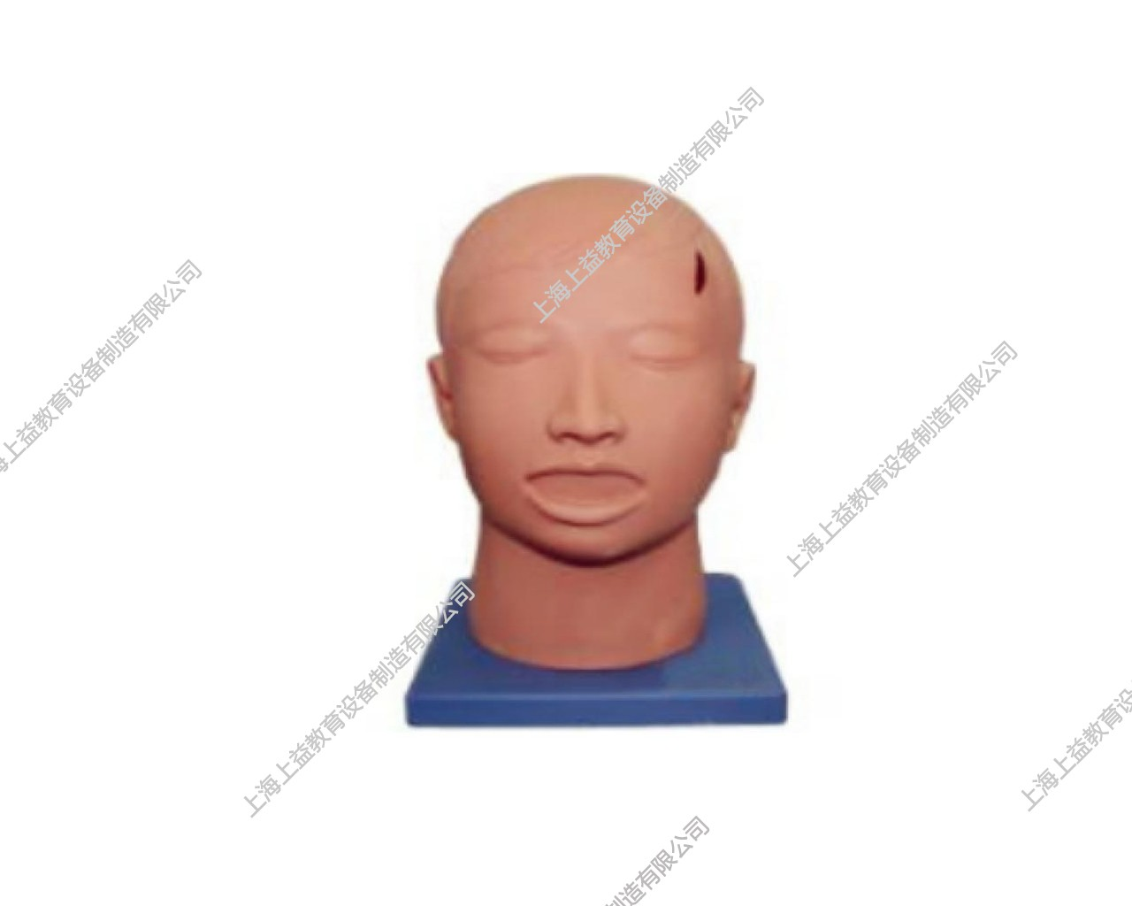 SG7234高级头部清创缝合拆线训练模型