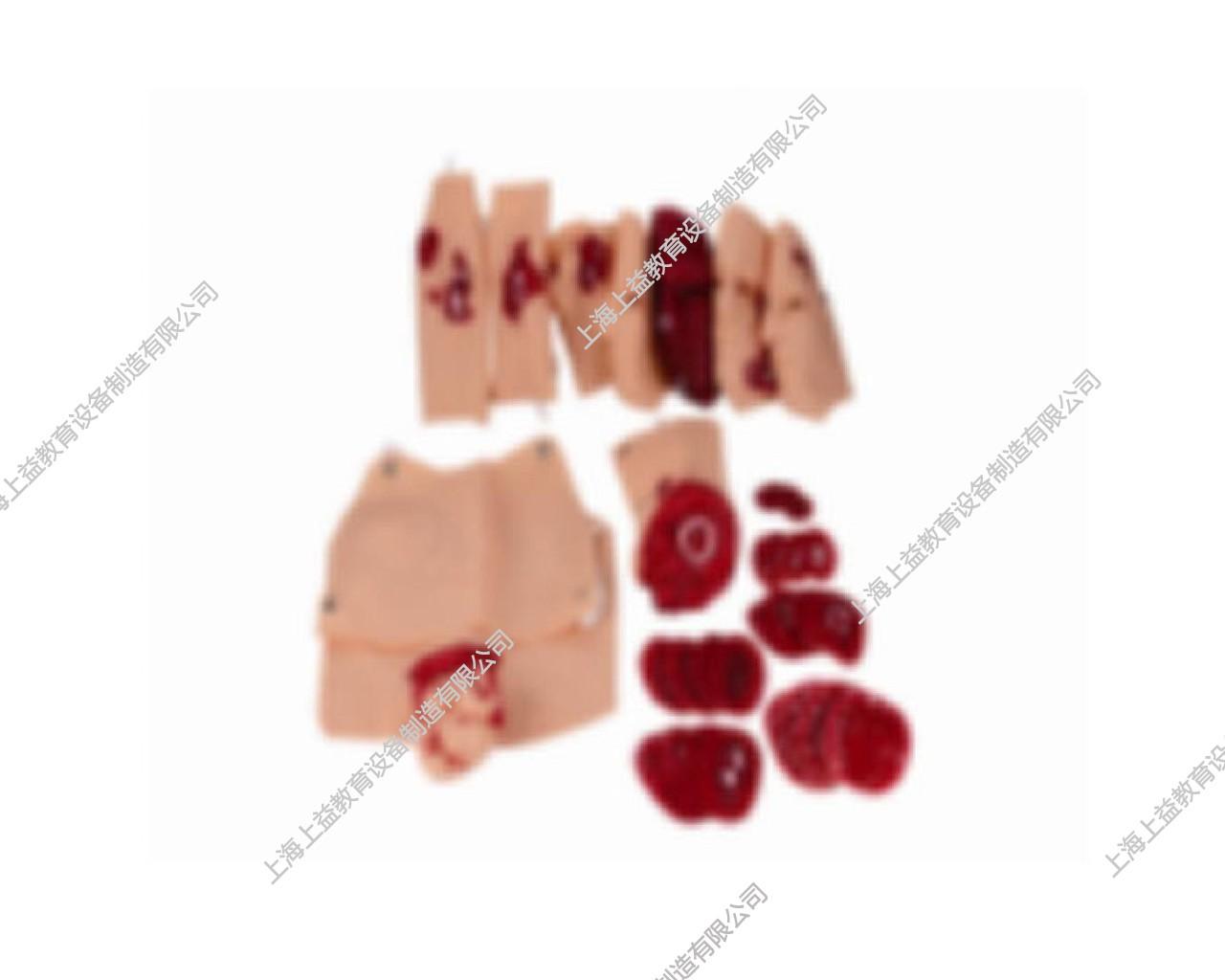 EM9221高级创伤模块(34件)
